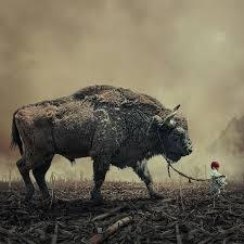girl-buffalo